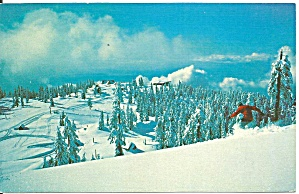 Grouse Mountain North Vancouver Bc P34720