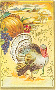 Thanksgiving Pumpkin and Turkey Postcard p3484 (Image1)