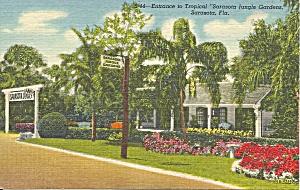 Sarasota Jungle Gardens Entrance Sarasota  Florida p34903 (Image1)