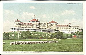 Mt Washington Hotel White Mountains NH Phostint card p34919 (Image1)