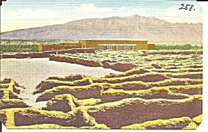 New Mexico Coronado State Monument postcard p35253 (Image1)