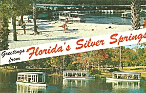 Florida Silver Springs Glass Boats Postcard P35274