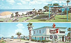 Daytona Beach Fl Starfish Beach Motel Postcard P35554
