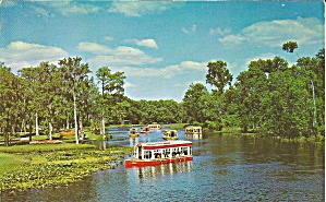 Silver Springs Fl Glass Bottom Boats P35588