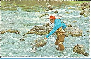 Fishing Scene 1980 postcard p35705 (Image1)