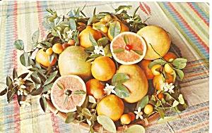 Lower Rio Grande Valley TX Citrus Fruit pPstcard p35739 (Image1)