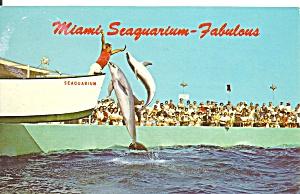 Miami FL Seaquarium postcard p35753 (Image1)