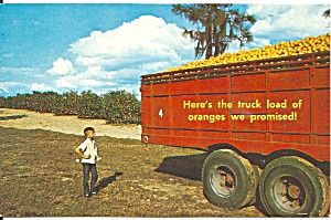 Florida Oranges Off To market postcard p35758 (Image1)