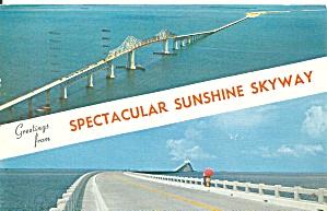 Sunshine Skyway Tampa Bay FL 1959 postcard p35776 (Image1)