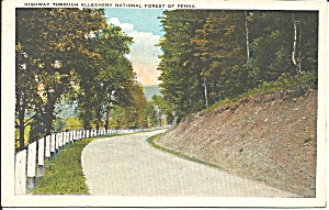 Allegheny National Forest Highway PA postcard p35966	 (Image1)