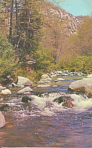 Oak Creek Canyon Az Springtime Postcard P36111