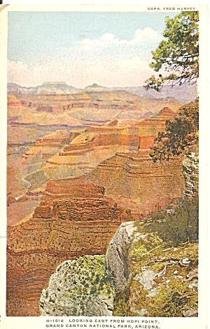 Grand Canyon AZ Hopi Point Phostint Fred harvey p36130 (Image1)