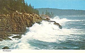 Acadia Nationa Park ME Northeaster storm p36162 (Image1)