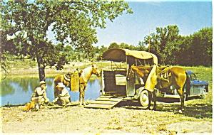 Texas Rangers Noonday Camp  Postcard p3629 (Image1)