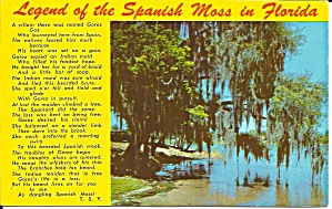 Legend Of The Spanish Moss In Florida Postcard P36311