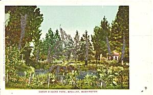 Spokane WA Coeur D Alene Park Glitter postcard p36320 (Image1)
