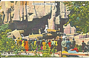 Chicago IL Brookfield Zoo postcard p36330 (Image1)