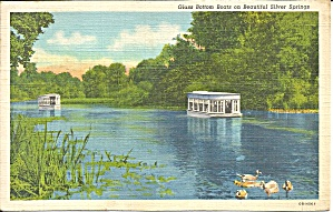 Silver Springs Fl Glass Bottom Boats Postcard P36484