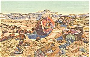 Petrified Forest Arizona  Postcard p3653 (Image1)