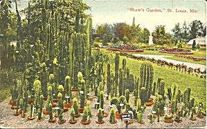 St Louis MO Shaw s Gardens 1911 postcard p36592 (Image1)