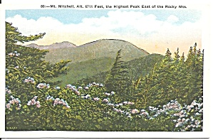 Mt Mitchell NC 6711 Feet postcard p36662 (Image1)