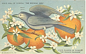 Florida State Bird State Flowers Postcard P36680