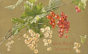 Best Wishes German Embossed 1907 Postcard P36719