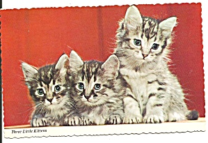 Three Little Kittens Postcard P36947