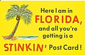 Florida Comical Postcard p37006 (Image1)