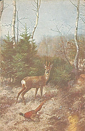 Josef Schmitzberger From Painting Deer And Pheasant P37080