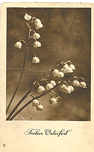 German Easter Postcard  Lillies of the Valley p37091 (Image1)