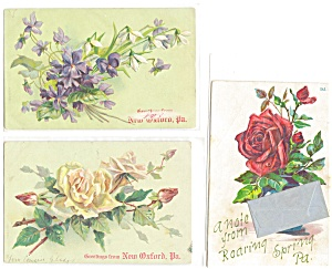 Floral Greetings From Vintage Postcard Lot 3 p3725 (Image1)