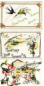 Greetings From Vintage Postcard Lot 5 Glitter p3726 (Image1)