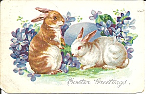 Easter Postcards Tuck S Postcard 1906