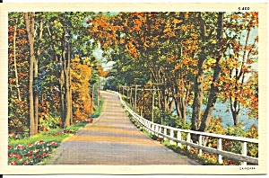 Autumn Country Road Linen Card P37451