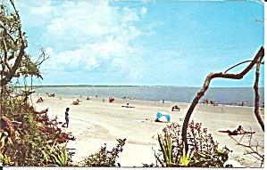 Jekyll Island GA White Sand Beach p37474 (Image1)