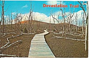 Hawaii Volcanoes Nation Park Devastation Trail p37572 (Image1)