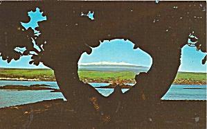 Hilo HI Mauna Kea p37624 (Image1)