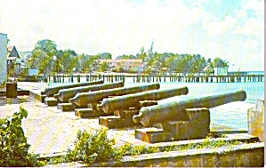 Harbour St Peter Cannons Caribbean Coast Barbados P37682
