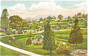 Busch's Sunken Gardens Pasadena CA Postcard (Image1)