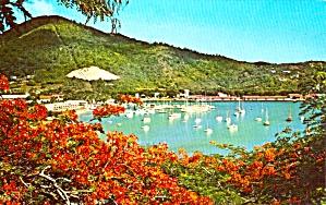 Yacht Haven St Thomas US Virgin Islands P37851 (Image1)