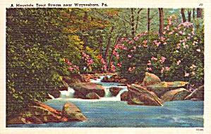 Waynesboro PA Mountain Trout Stream Postcard p37945 (Image1)
