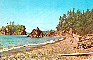 Pacific Ocean Beach Ruby Beach Washington P38042 (Image1)