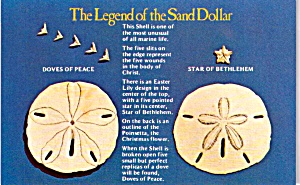 Legend Of The Sand Dollar P38129