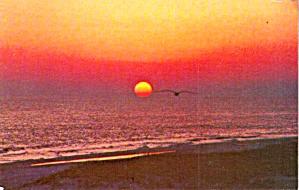 Sunrise at Myrtle Beach P38200 (Image1)