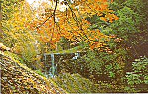 Rural Scene in Fall Foliage P38253 (Image1)