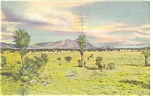 Sunset On The Desert Postcard Linen