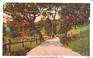 Greetings From Saltsburg PA p38495 (Image1)
