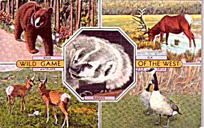 Wild Game Of The West P38600