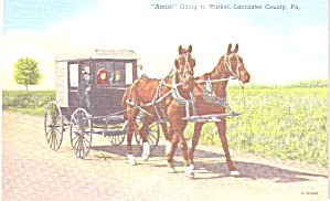 Pennsylvania Amish Buggy Going to Market p38784 (Image1)